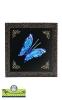 قاب میناکاری با پروانه